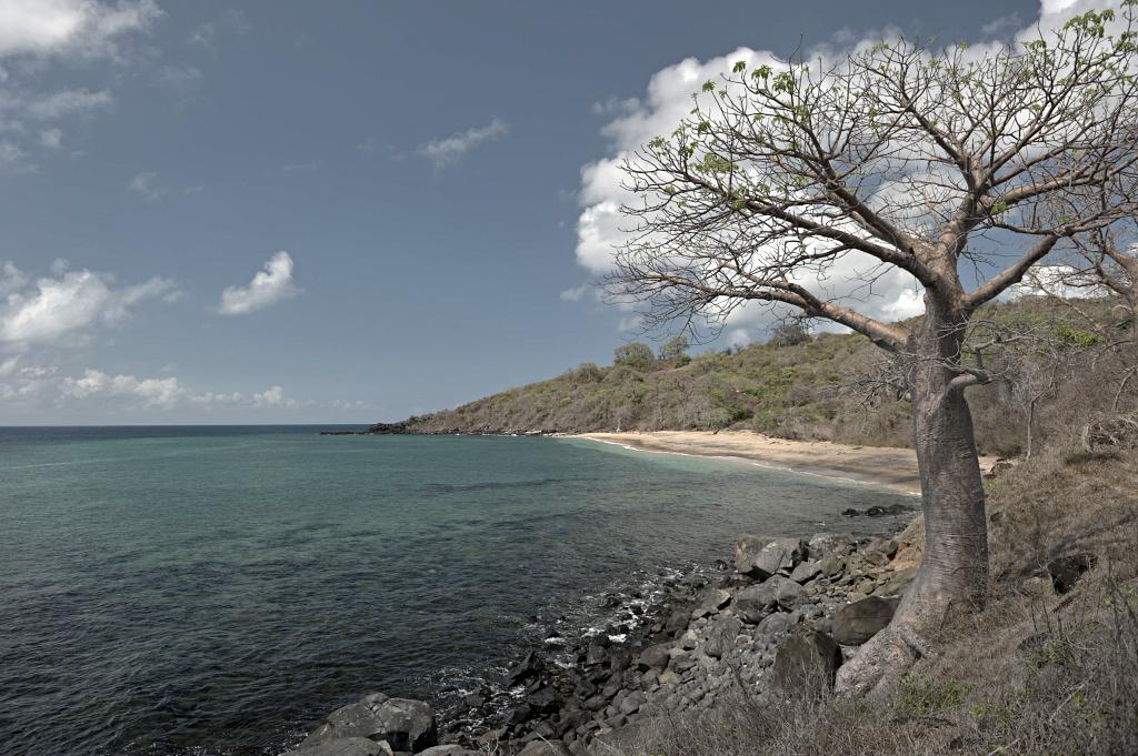 Mayotte - ©Alain Fleurial 2013